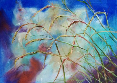 Grasses at Streamside
